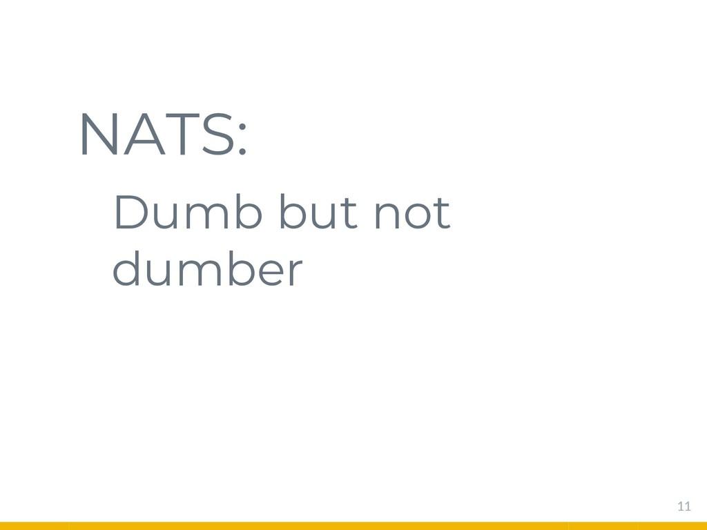 NATS: Dumb but not dumber 11
