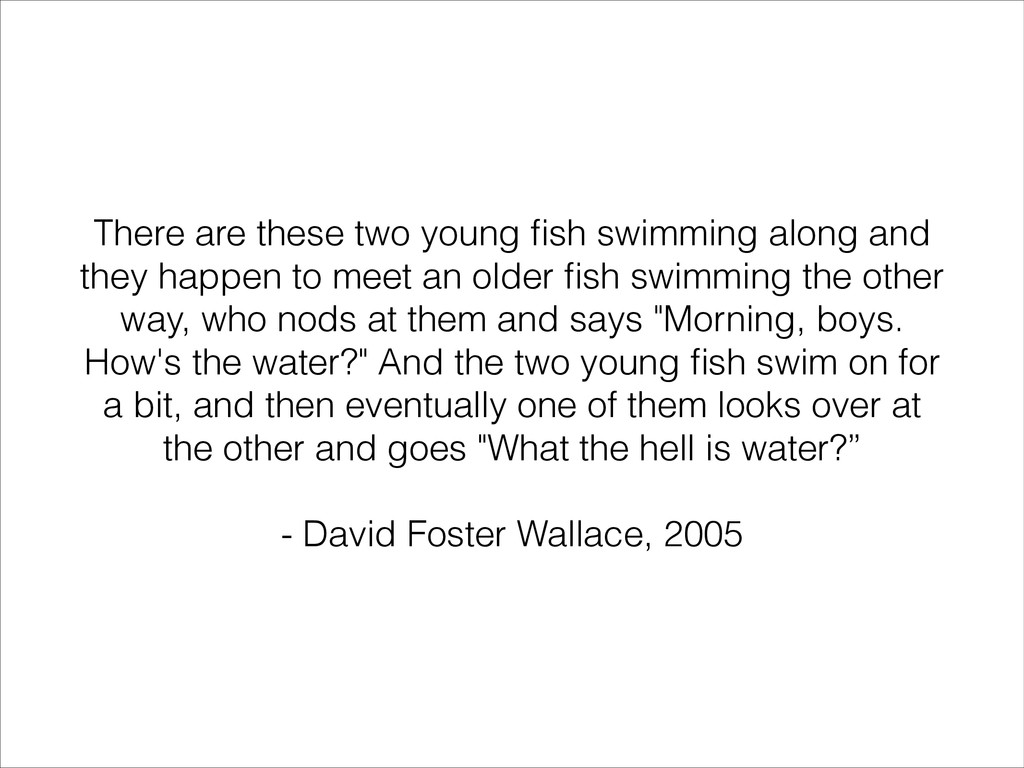 There are these two young fish swimming along an...
