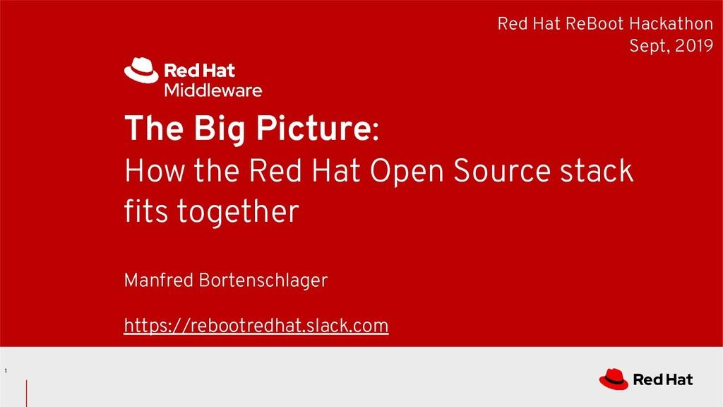 Red Hat ReBoot Hackathon Sept, 2019 The Big Pic...