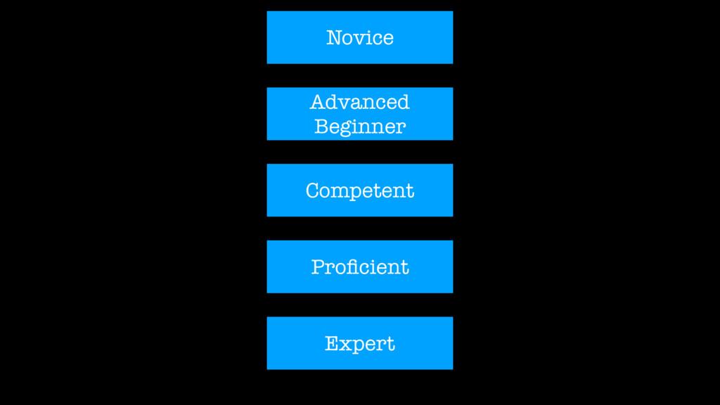 Novice Advanced Beginner Competent Proficient Ex...
