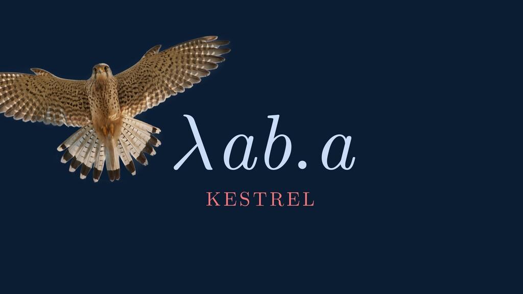 ab.a KESTREL