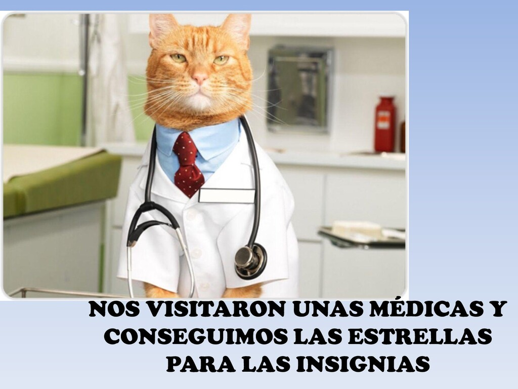 NOS VISITARON UNAS MÉDICAS Y CONSEGUIMOS LAS ES...