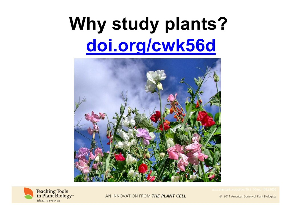 Why study plants? doi.org/cwk56d www.plantcell....