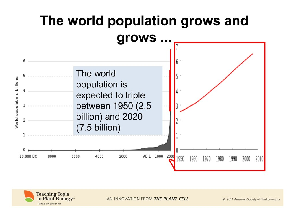 The world population grows and grows ... The wo...
