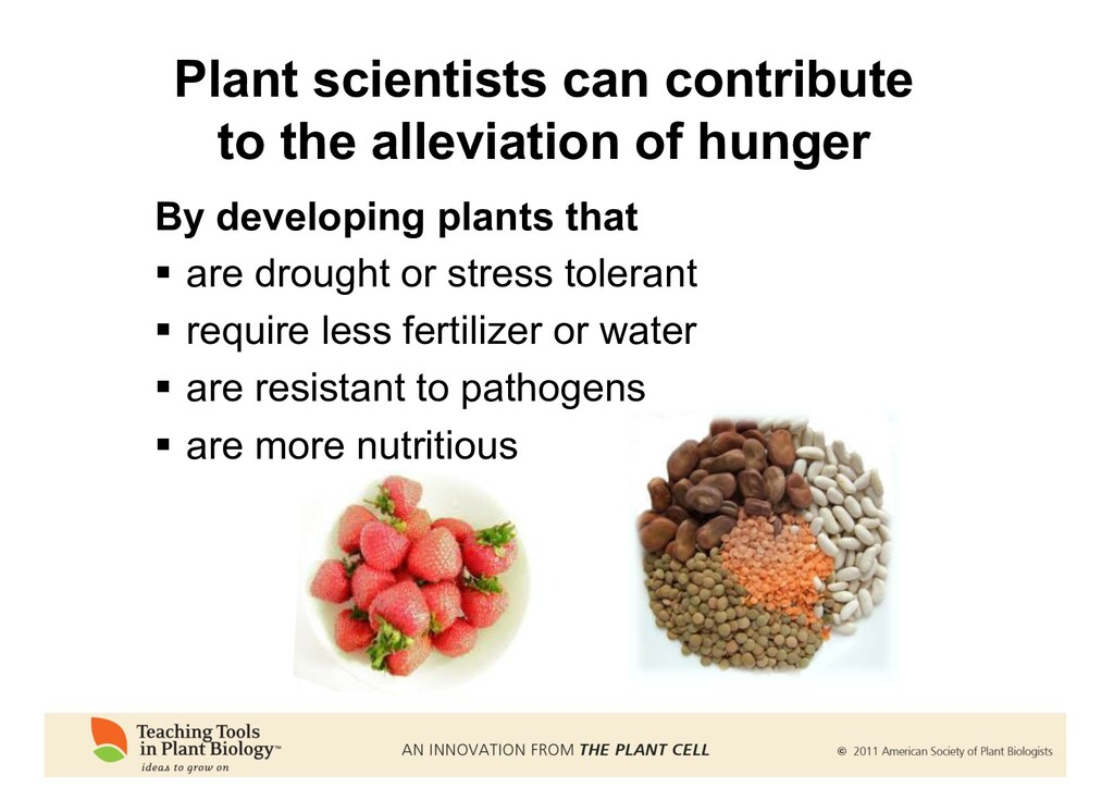 By developing plants that § are drought or stre...