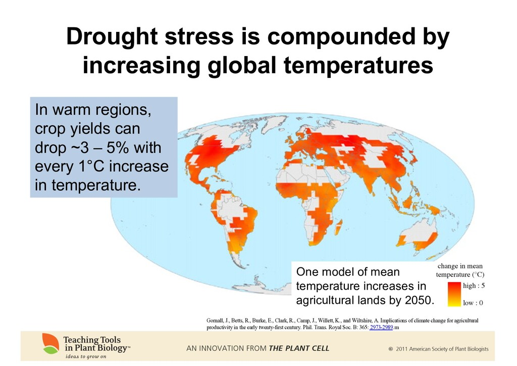 Drought stress is compounded by increasing glob...