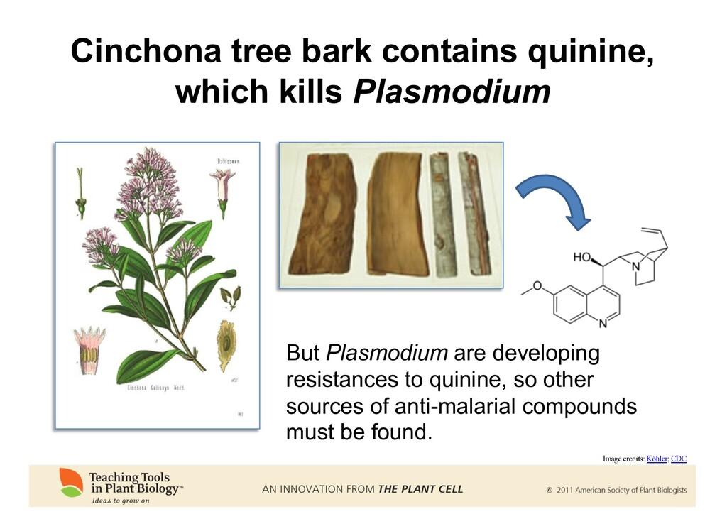 But Plasmodium are developing resistances to qu...