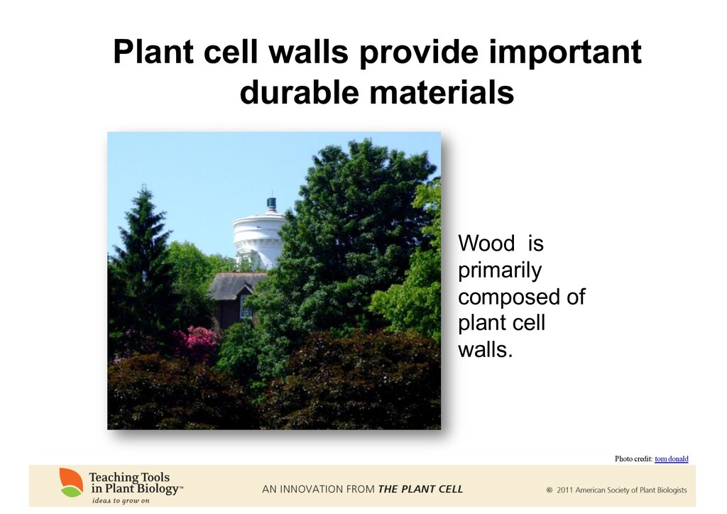 Plant cell walls provide important durable mate...