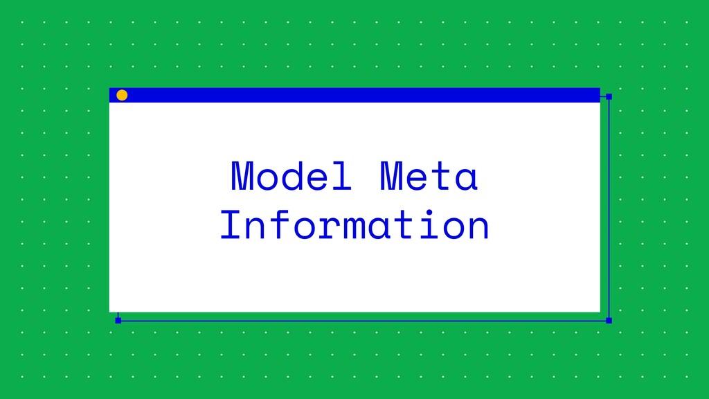 Model Meta Information