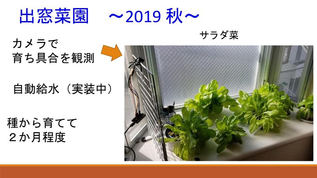カメラで 育ち具合を観測 自動給水(実装中) 出窓菜園 ~2019 秋~ 種から育てて 2か月...