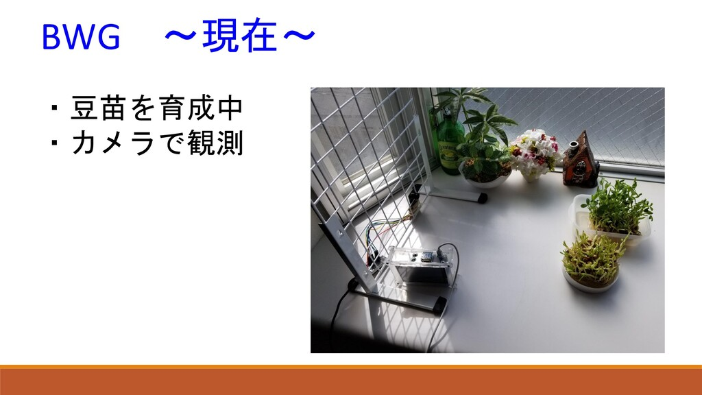 BWG ~現在~ ・豆苗を育成中 ・カメラで観測