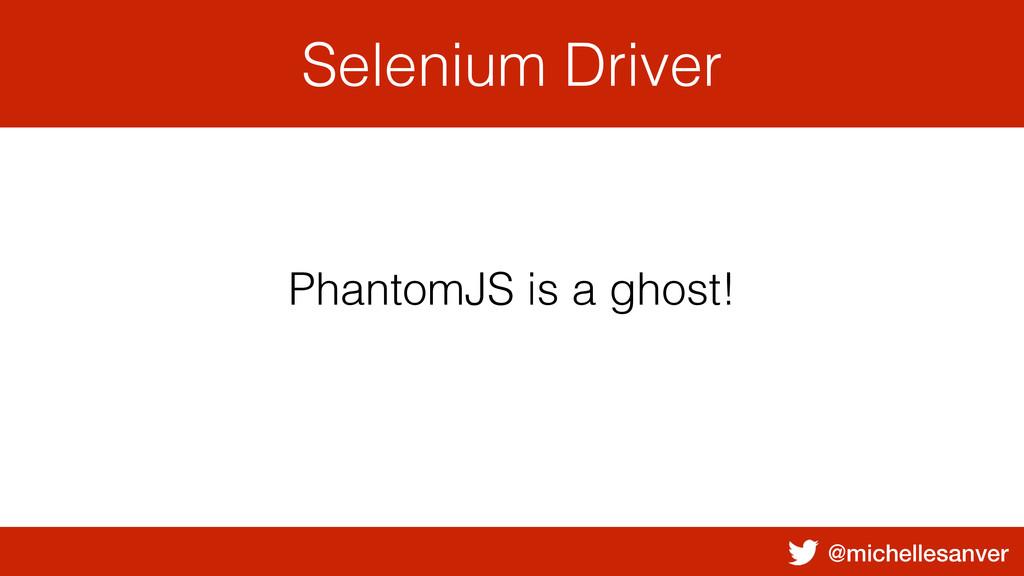 @michellesanver Selenium Driver PhantomJS is a ...