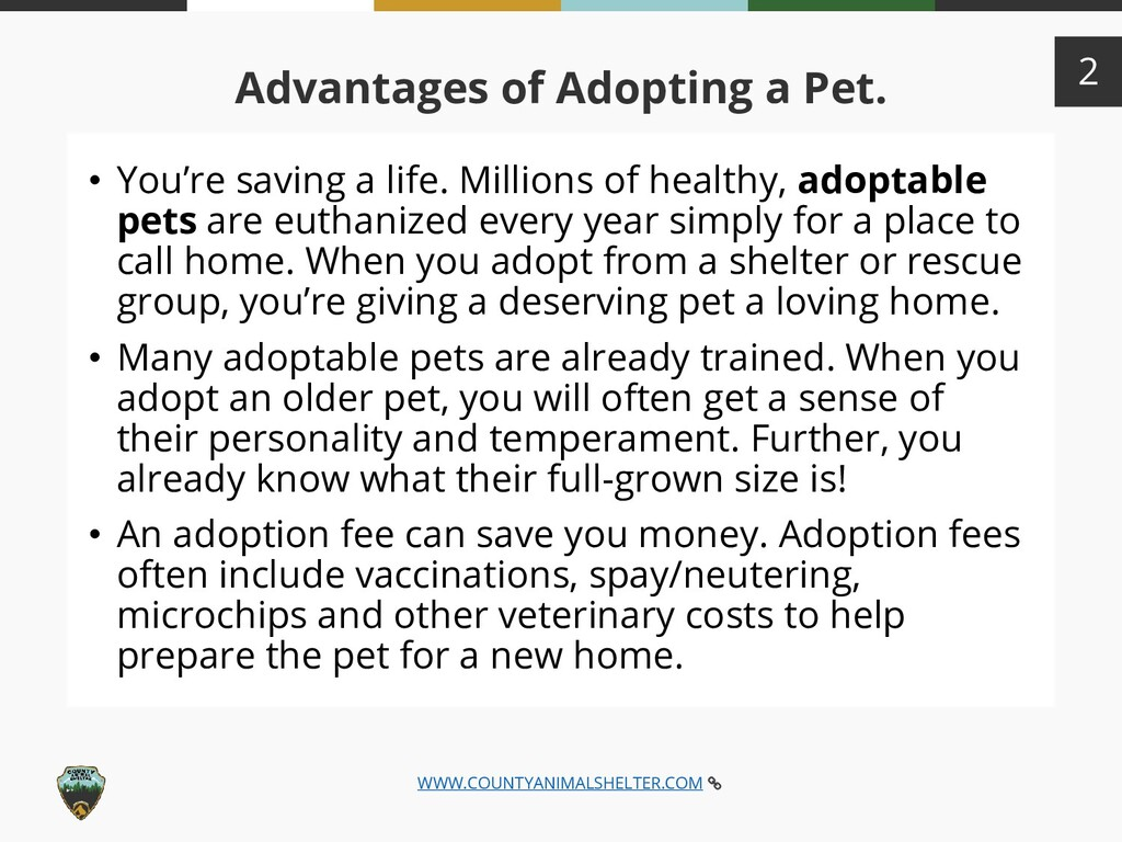 WWW.COUNTYANIMALSHELTER.COM 2 : Advantages of A...