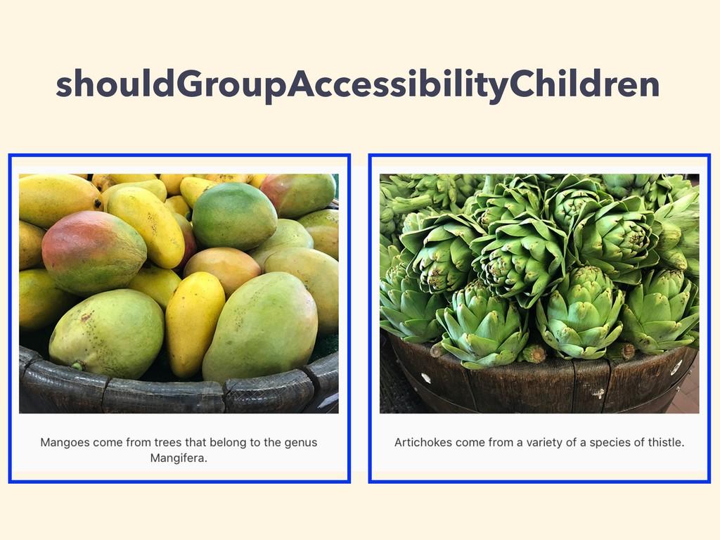 shouldGroupAccessibilityChildren