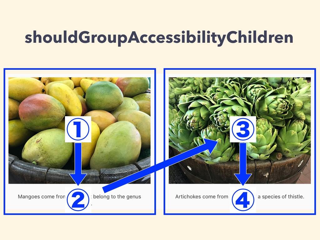 shouldGroupAccessibilityChildren ᶃ ᶄ ᶅ ᶆ