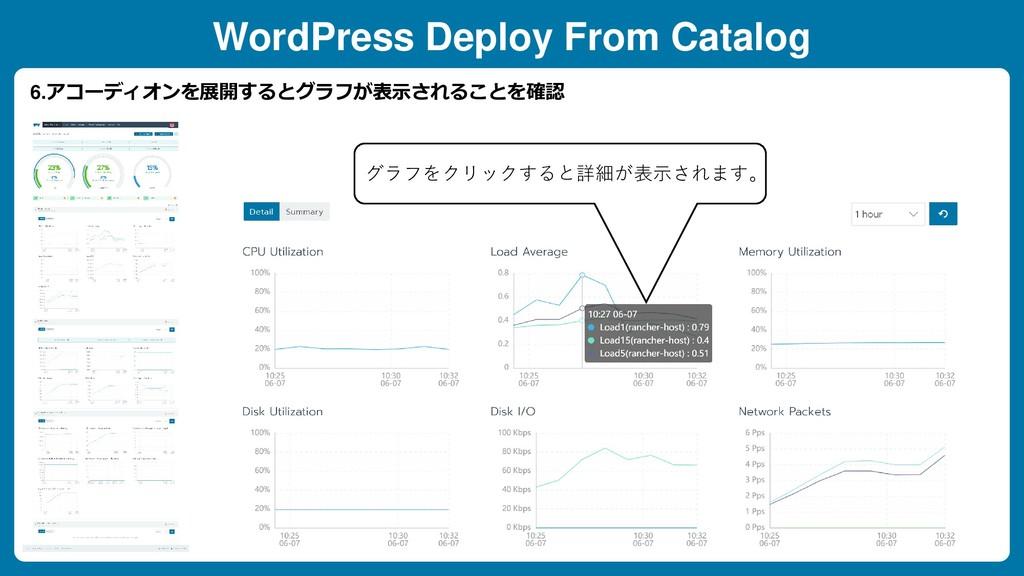 WordPress Deploy From Catalog 6.アコーディオンを展開するとグラ...