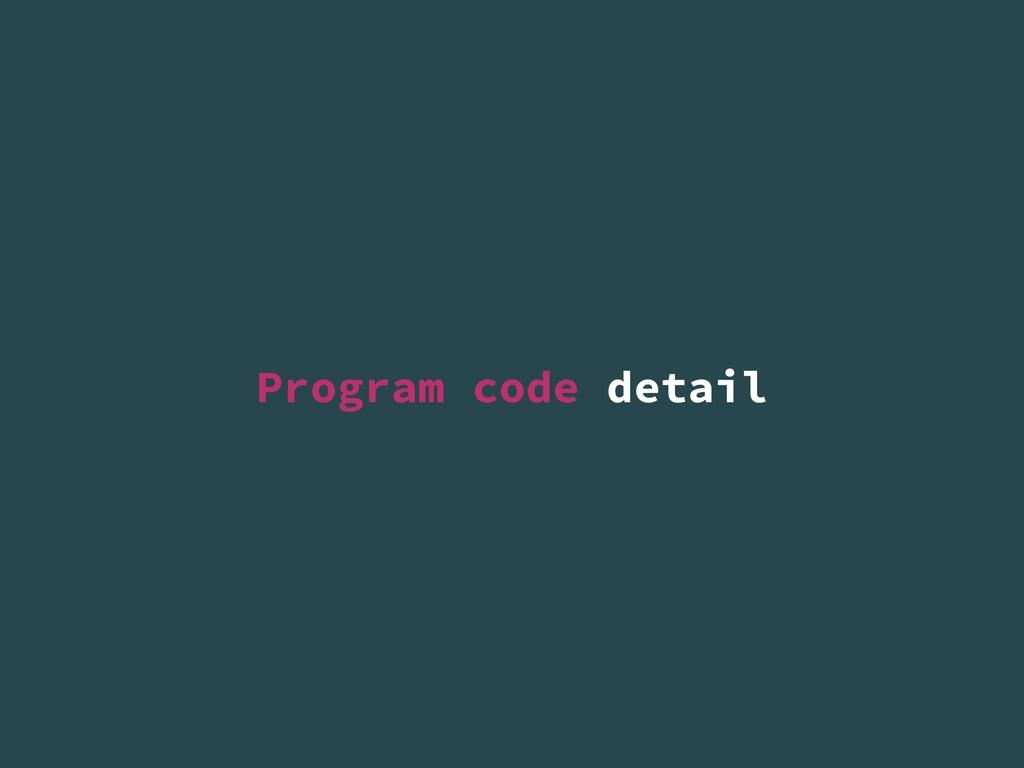 Program code detail