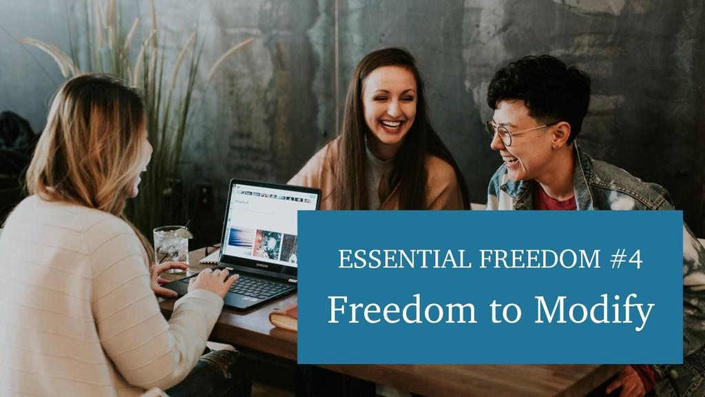 ESSENTIAL FREEDOM #4 Freedom to Modify