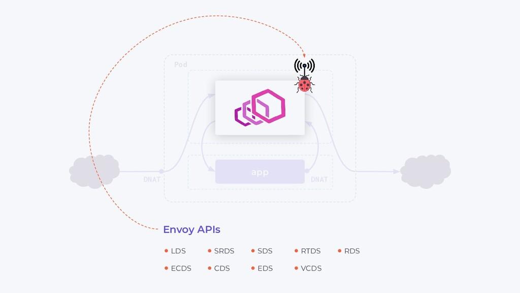 app Pod DNAT DNAT ECDS LDS CDS SRDS EDS SDS VCD...