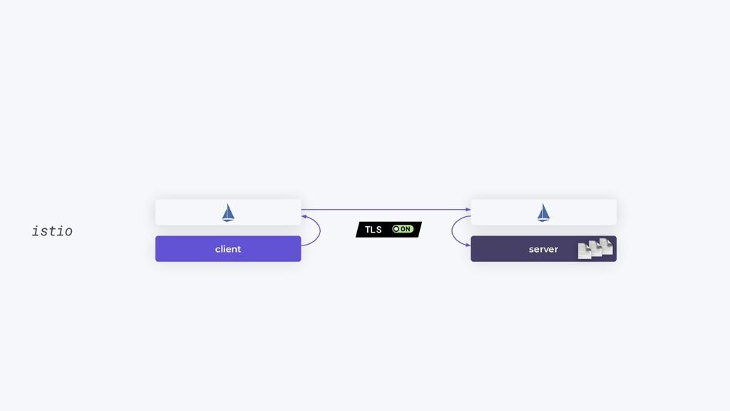 client istio server TLS