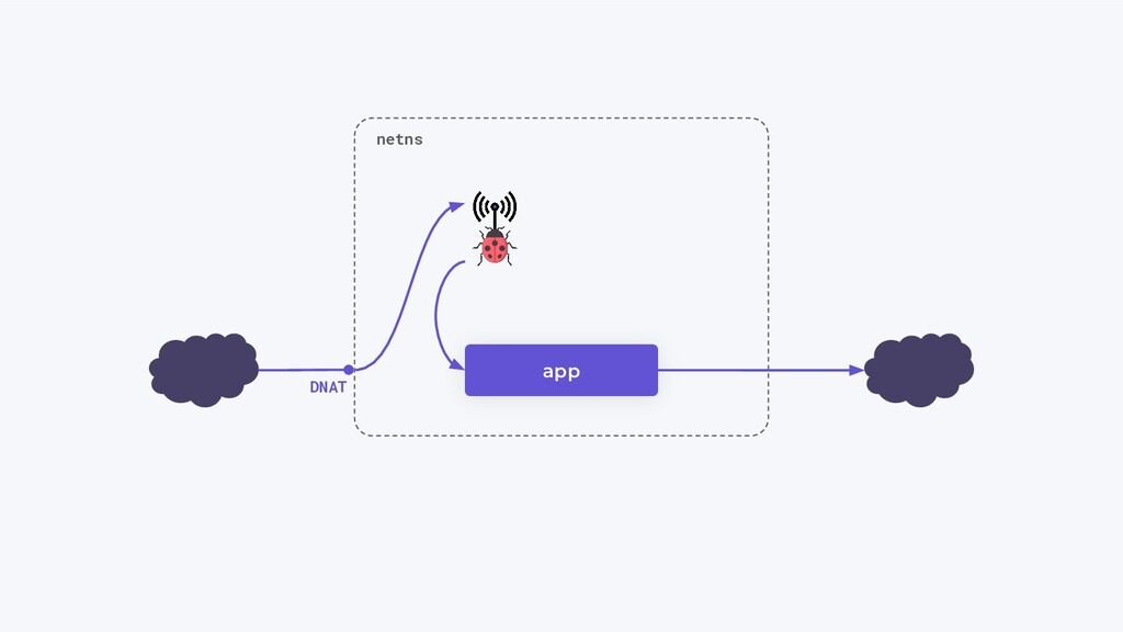 app netns DNAT