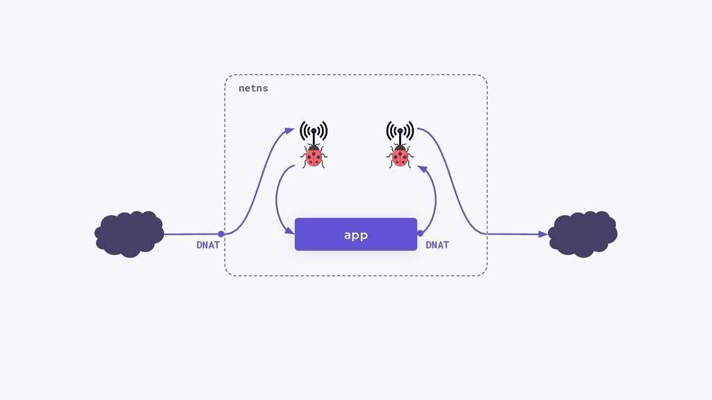 app netns DNAT DNAT