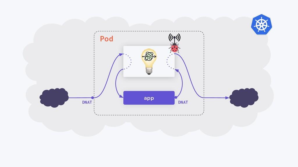 app DNAT DNAT Pod