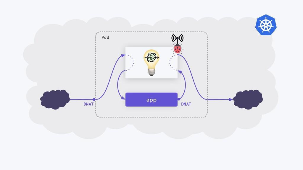 app Pod DNAT DNAT