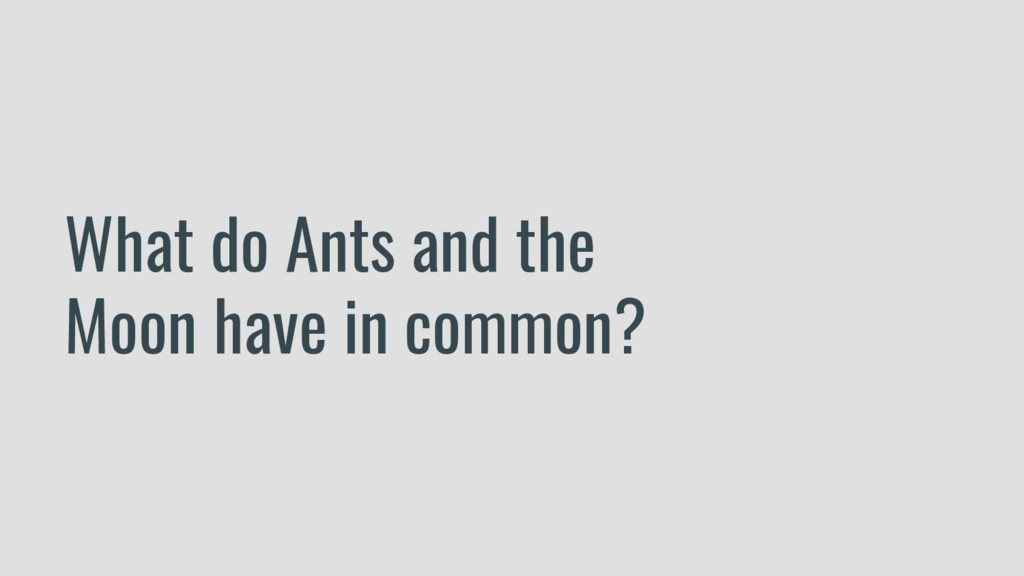What do Ants and the Moon have in common?