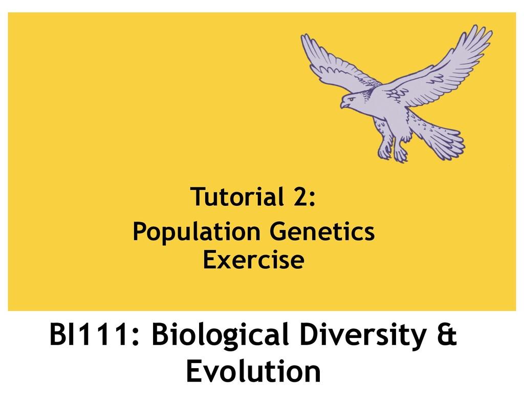 BI111: Biological Diversity & Evolution Tutoria...