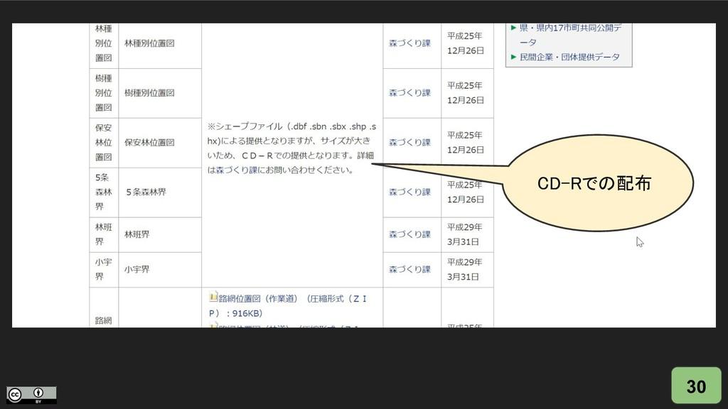 30 CD-Rでの配布