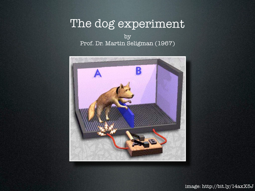 by Prof. Dr. Martin Seligman (1967) The dog exp...