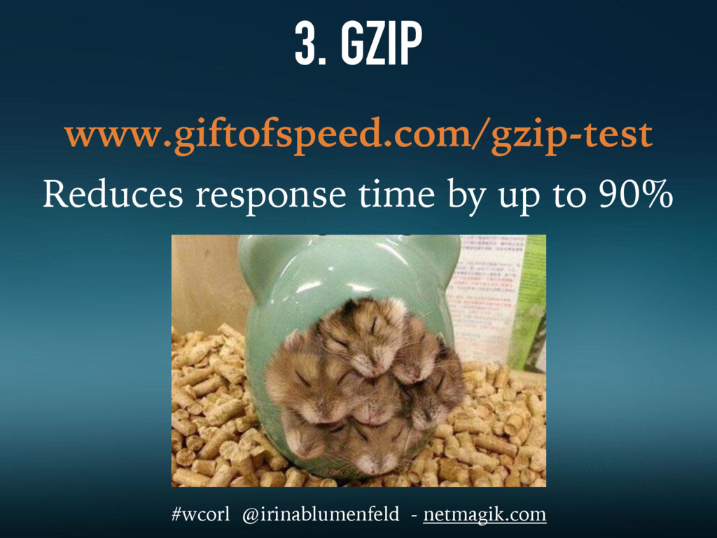 3. GZIP www.giftofspeed.com/gzip-test Reduces r...