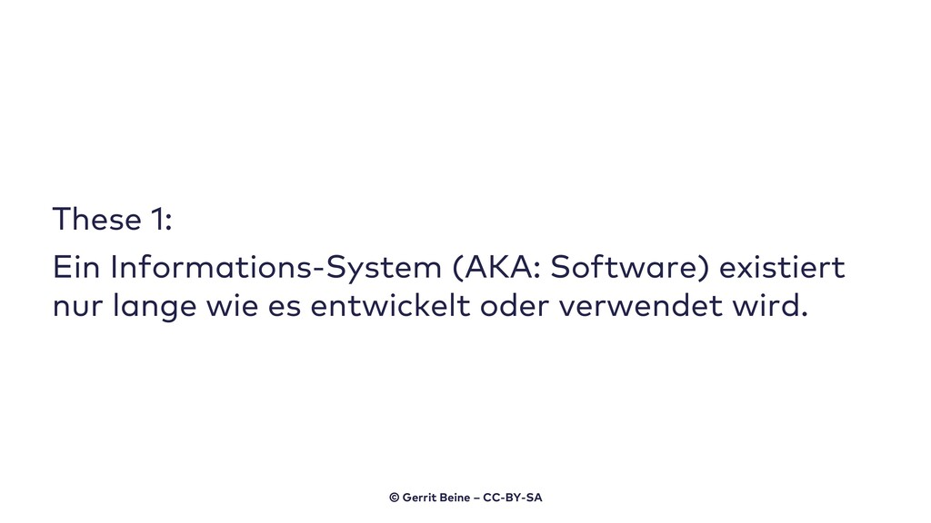 These 1: Ein Informations-System (AKA: Software...