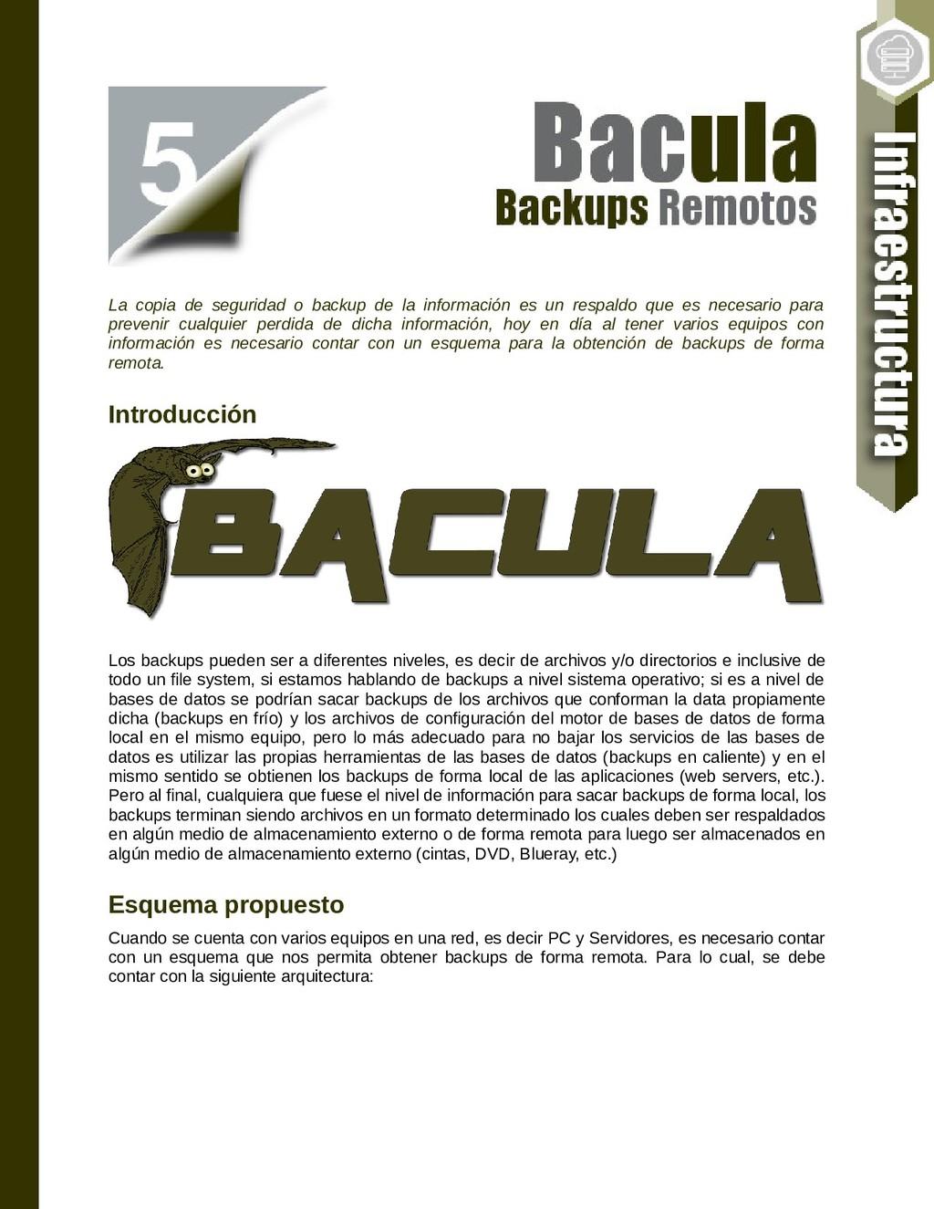 La copia de seguridad o backup de la informació...