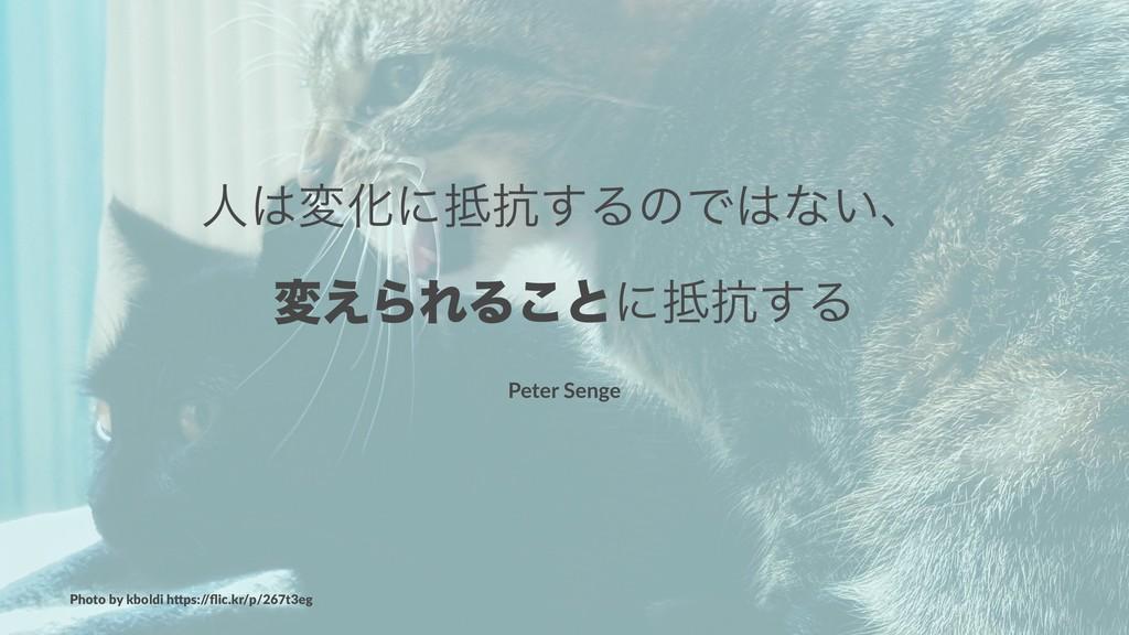 ਓมԽʹ߅͢ΔͷͰͳ͍ɺ ม͑ΒΕΔ͜ͱʹ߅͢Δ Peter Senge Photo ...
