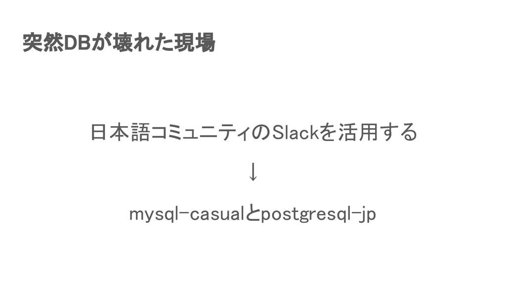 突然DBが壊れた現場 日本語コミュニティのSlackを活用する ↓ mysql-casu...