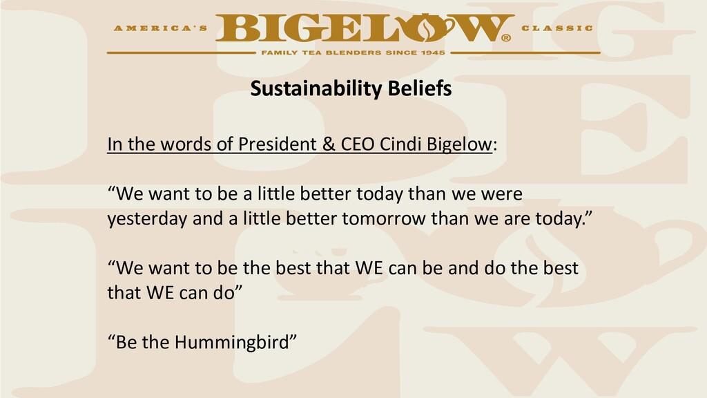 Sustainability Beliefs In the words of Presiden...