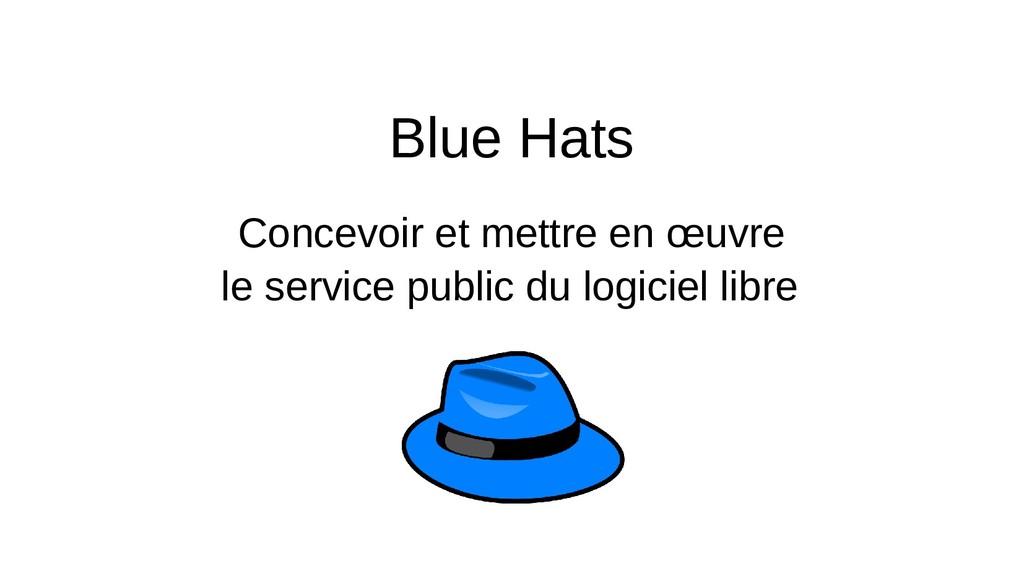 Blue Hats Concevoir et mettre en œuvre le servi...