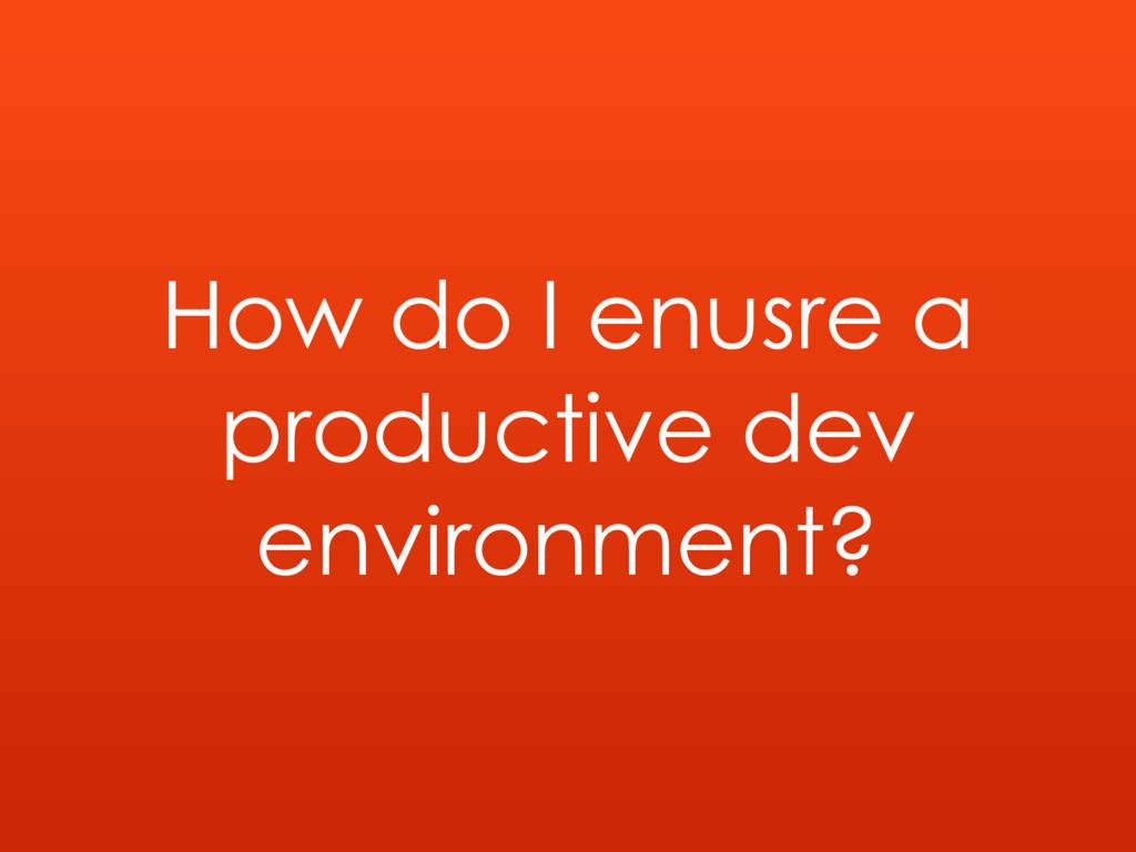How do I enusre a productive dev environment?