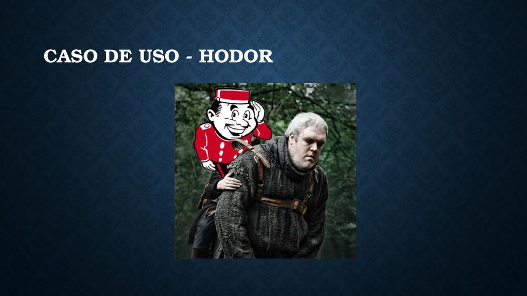CASO DE USO - HODOR