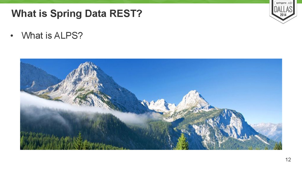 What is Spring Data REST? • What is ALPS? 12