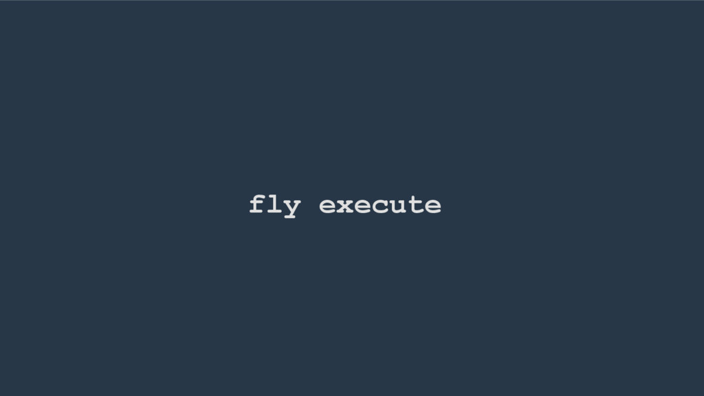 fly execute