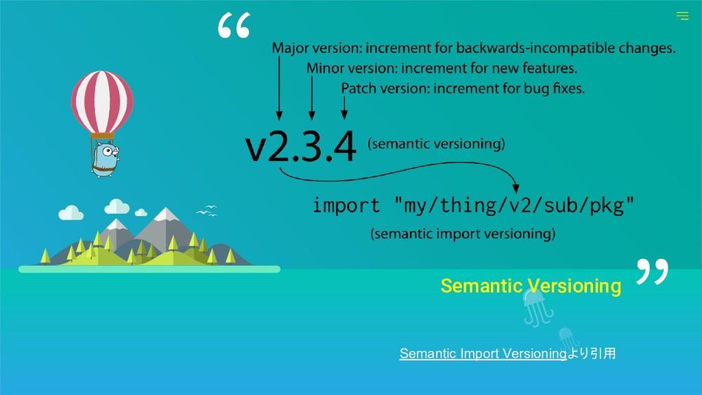 Semantic Versioning Semantic Import Versioningよ...