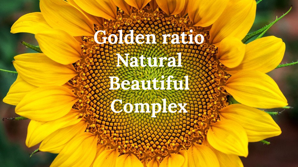 Golden ratio Natural Beautiful Complex