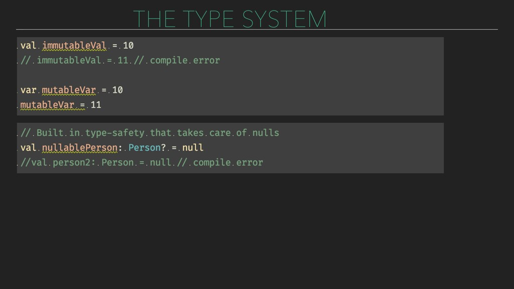 THE TYPE SYSTEM