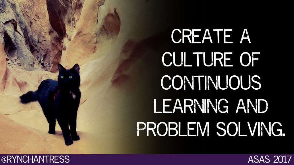 create a culture of continuous learning and pro...