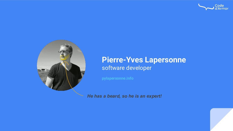 Pierre-Yves Lapersonne software developer pylap...