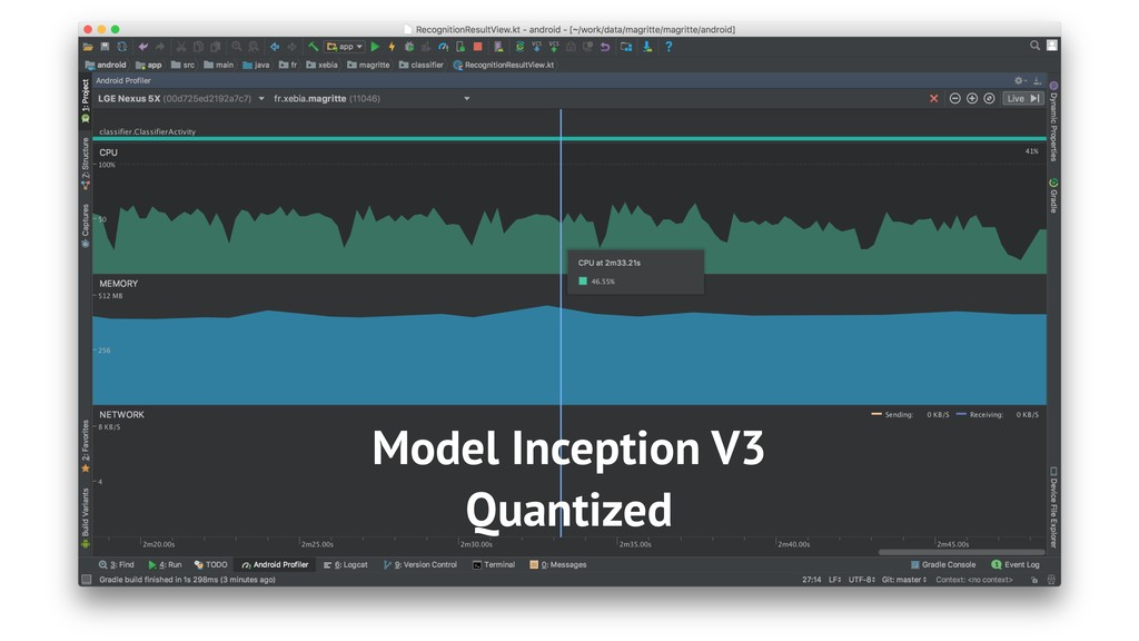Model Inception V3 Quantized