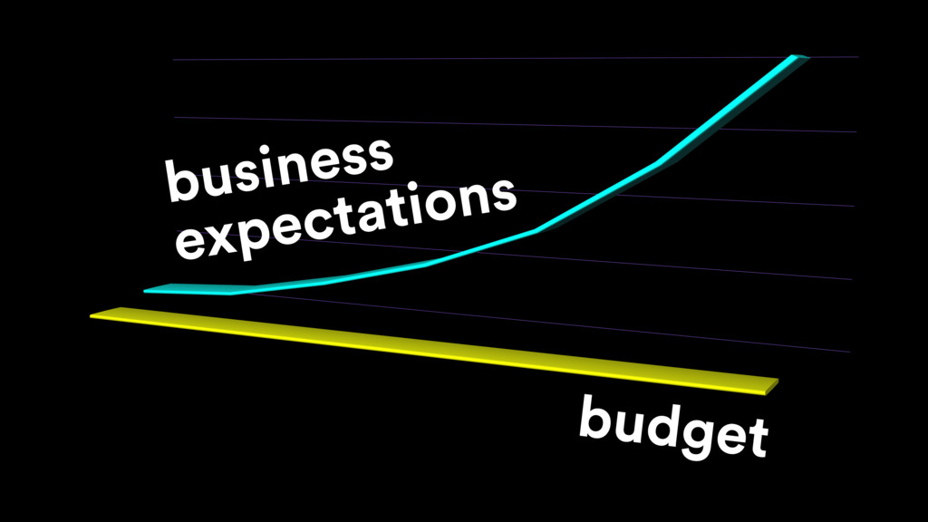 budget business expectations